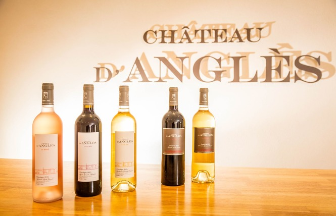 CHATEAU D'ANGLES 19 - Fleury